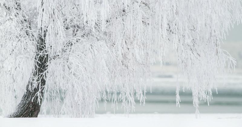Orticaria da freddo: sintomi, cause, prevenzione